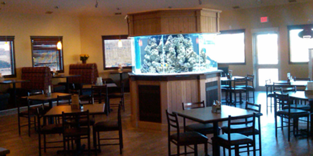 Check out the central aquarium at Joey's Sylvan Lake